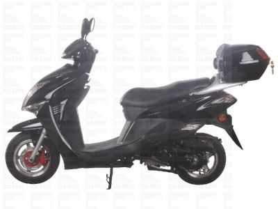 50cc Moped (PMZ50-4J) Metallic Black