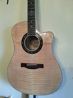 Fender T-Bucket 400ce with HC