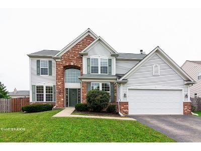 4 Bed 3 Bath Foreclosure Property in Bolingbrook, IL 60490 - S Palmer Dr