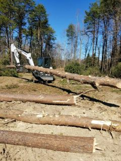 Tree Service, Grading, Excavation, Landscaping Service