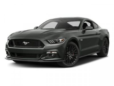 2017 Ford Mustang GT (Shadow Black)