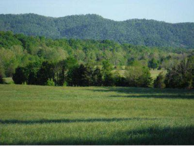 1475 Crumley Road Greeneville, 267+ acres right off