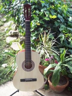 $50 Acoustic Guitars