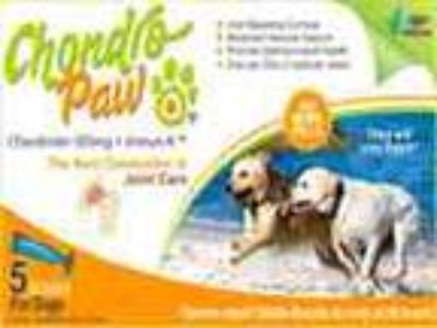 Dog Arthritis And Pain Relief Supplement
