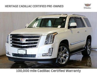2015 Cadillac Escalade Luxury (White Diamond Tricoat)