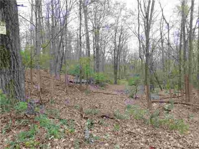 10 Ivy Rock Street New Windsor, Nice 6 acre wooded property.