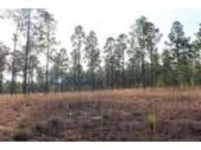 Looking for a large lot to build your dream h...