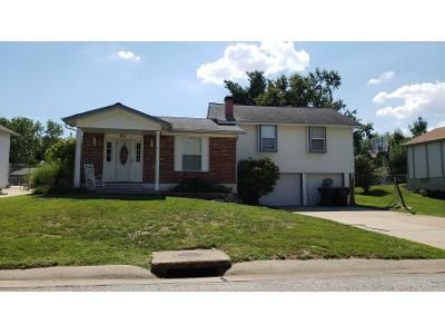 3 Bed 2 Bath Preforeclosure Property in Saint Peters, MO 63376 - Jane Dr