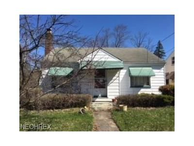 2 Bed 1 Bath Foreclosure Property in Campbell, OH 44405 - Whipple Ave