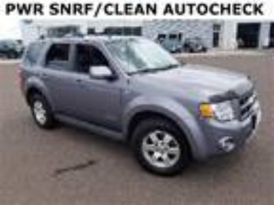 used 2008 Ford Escape for sale.