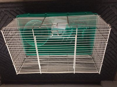 New Hamster Cage