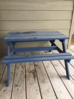 Blue Childrens picnic table