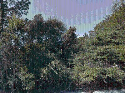Residential Lot for Sale in Sebring, Florida