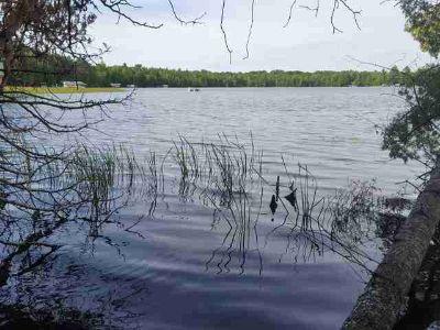 Off Woodland Ln Three Lakes, DOG LAKE ACREAGE - Chain