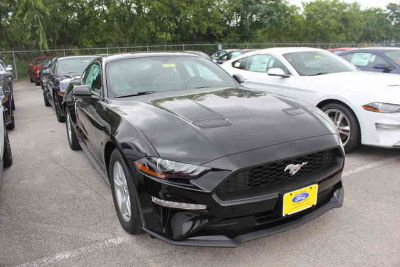 New 2019 Ford Mustang Fastback