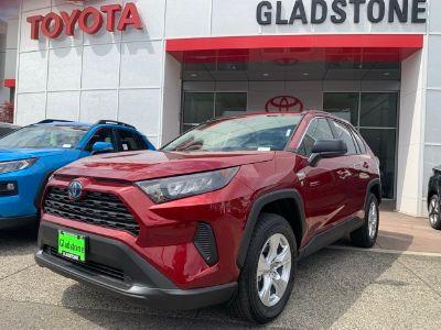 2019 Toyota RAV4 (Ruby)