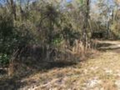 Land for Sale by owner in Nesmith, SC