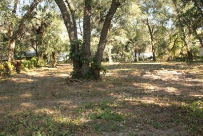 - $4900 Florida land in Silver Springs (Ocala National Forest)