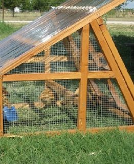 PRE-ORDER FOR CHRISTMAS- Duck coop for sale- Portable and Protective