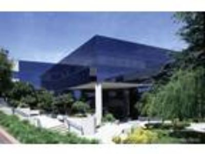 Calabasas, High image corporate headquarters Free surface