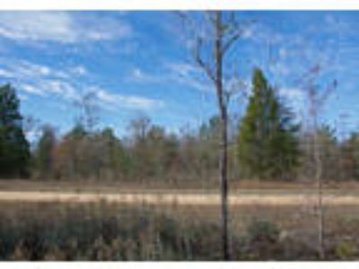 Wooded Northern Florida Land - 1 Acre, Lake Close