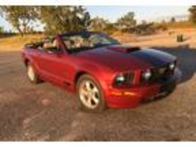 2007 Ford Mustang Coupe in Muskegon, MI