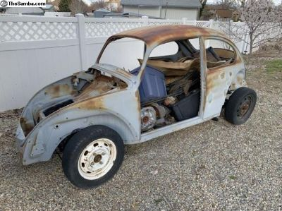 1968 Beetle Shell And Restored Pan W/motor