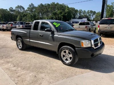 2005 Dodge Dakota ST (Gray)