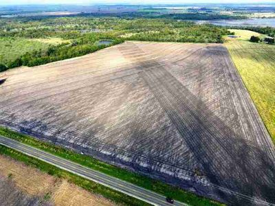 0000 1331 Taylor, 50 Acres of highly productive farm land