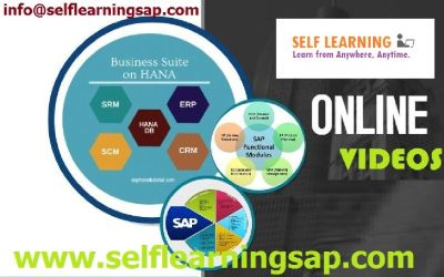 SAP all Modules Are Available @ Best Price in SELF LEARNING CENTER.