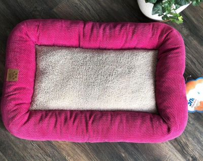 NEW Dog Bed *