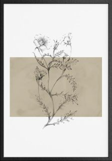 Botanical 4 Art Print