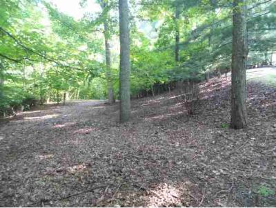 5213 Foxfire Place Kingsport, Looking for the perfect lot to