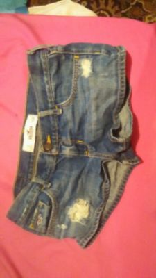 Women hollister short