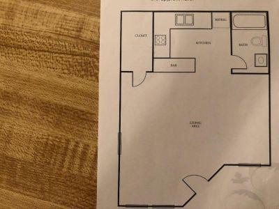 Apartment for Sublease - Studio
