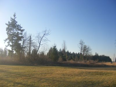Land for Development in Camas, Washington, Ref# 2520579