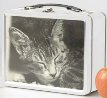 Cat Photo Lunch Box Squeeky The Cat by JPDenyer