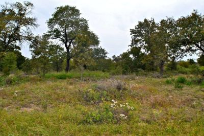 170 Eaglerock - Land For Sale in Poteet, TX 78064 on 1.02 acres!