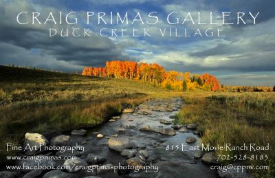 Sales Associate Wanted for Craig Primas Gallery