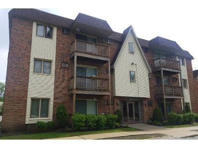 Preforeclosure Property in Tinley Park, IL 60477 - 172nd St Apt 2c