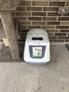 Less than 2 month old cat litter box