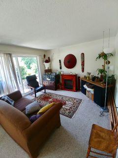 Roommate needed for 2 bdrm apartment near Hillside