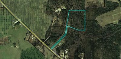 Land for sale in Peach CO