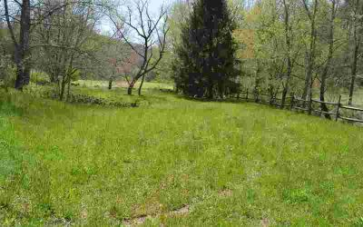 1753 Ford Road Warne, Nice, level fenced creek front lot