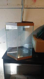 Octagon aquarium between 10-20 gallon with lid