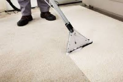 Are you find the best Carpet Cleaning in  Florida?