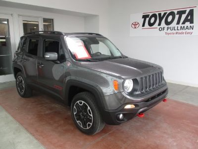 2017 Jeep Renegade Trailhawk (Granite Crystal)