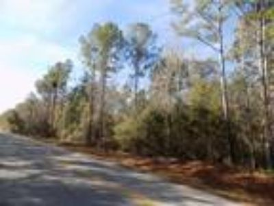 Land for Sale by owner in Sopchoppy, FL