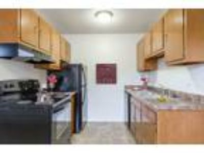 Penfield Village Apartments - Two BR, One BA 747 sq. ft.