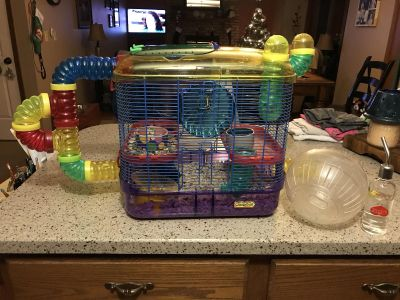 Hamster habitat and all accessories.